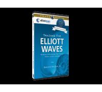 [Info-DVD] Экспресс-обучение «Введение в волновой трейдинг»