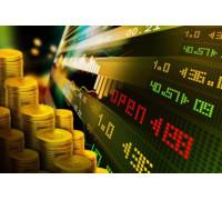 Видеокурс «Внутридневная торговля на Forex» Обучение от Trader's Blog