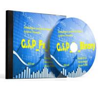 G.S.P._Fx_Binary – торговая система для Форекс и Бинарных Опционов