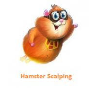 Автоматический торговый советник Hamster Scalping