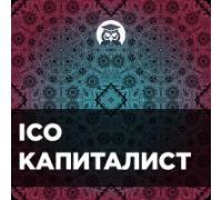 Видеокурс «Умножение депозита на ICO»