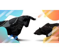 FX Profit Strategy – уникальная авторская методика торговли на форекс