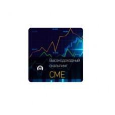 Видеокурс «Высокодоходный скальпинг на CME 2.0 (e-mini sp500 futures)» Евгений Стриж
